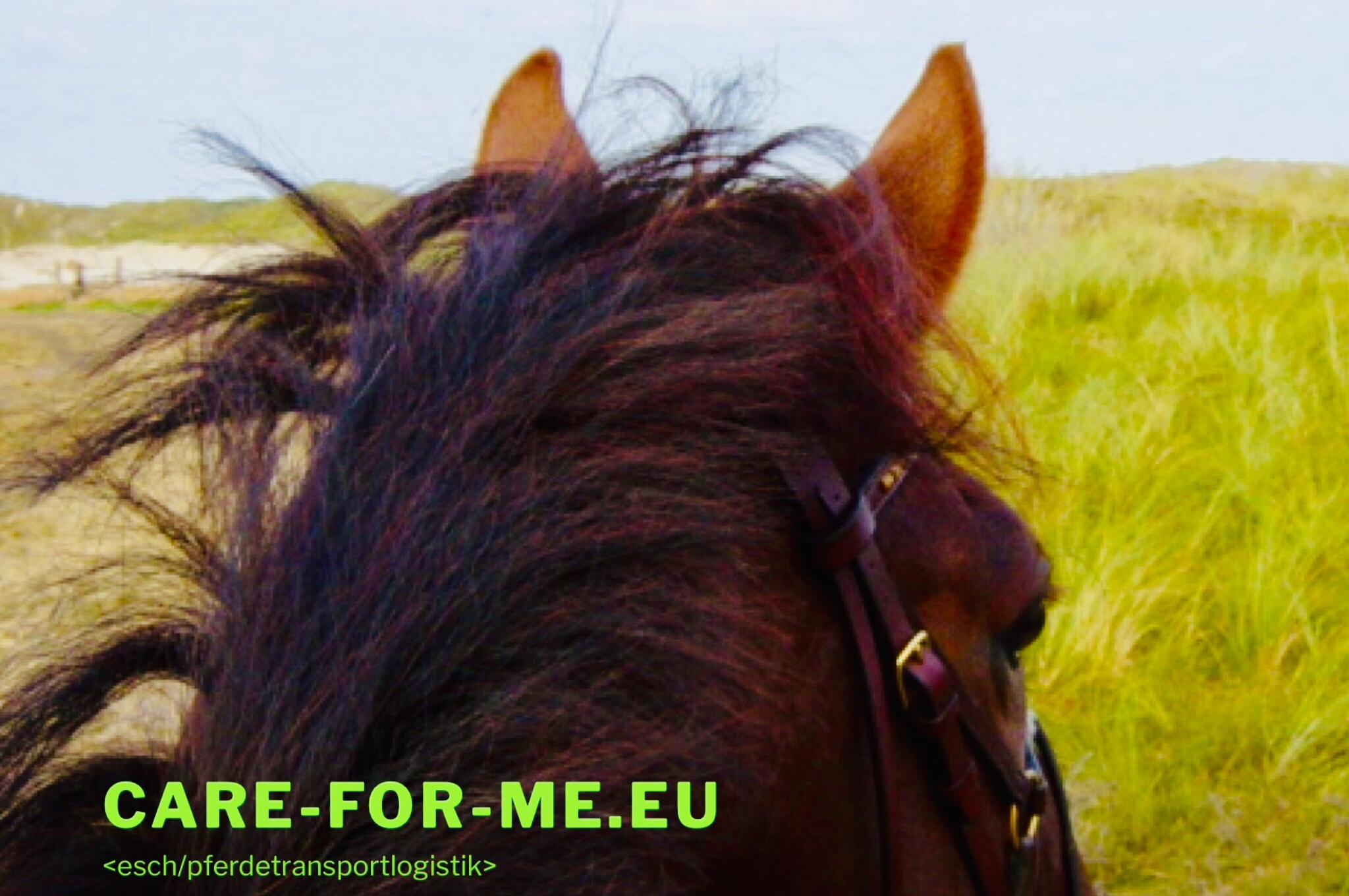 <esch/pferdetransportlogistik>
